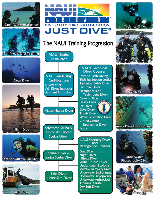 Diving Progression Chart